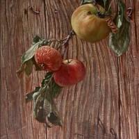 Jabuke, 40x25 cm, 2002.